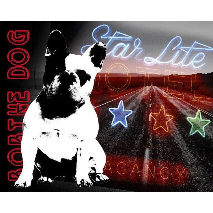 Toile lumineuse led bob the dog 50 x 40 cm leroy merlin - Guirlande lumineuse exterieur leroy merlin ...