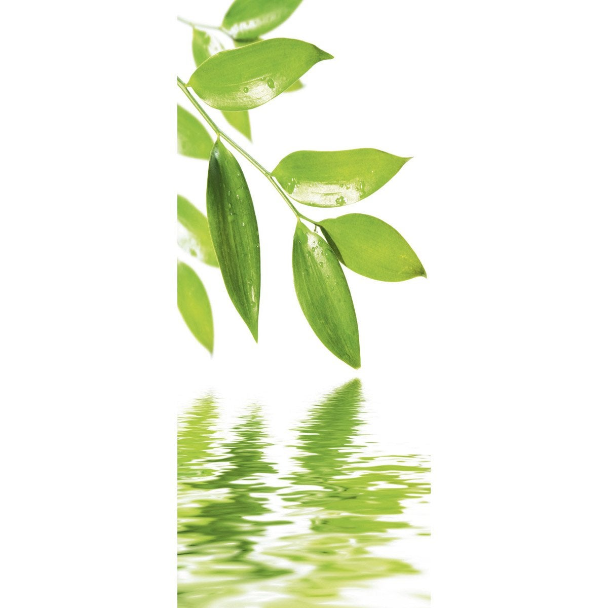 cloison decorative fresh green leaves 100x240. Black Bedroom Furniture Sets. Home Design Ideas
