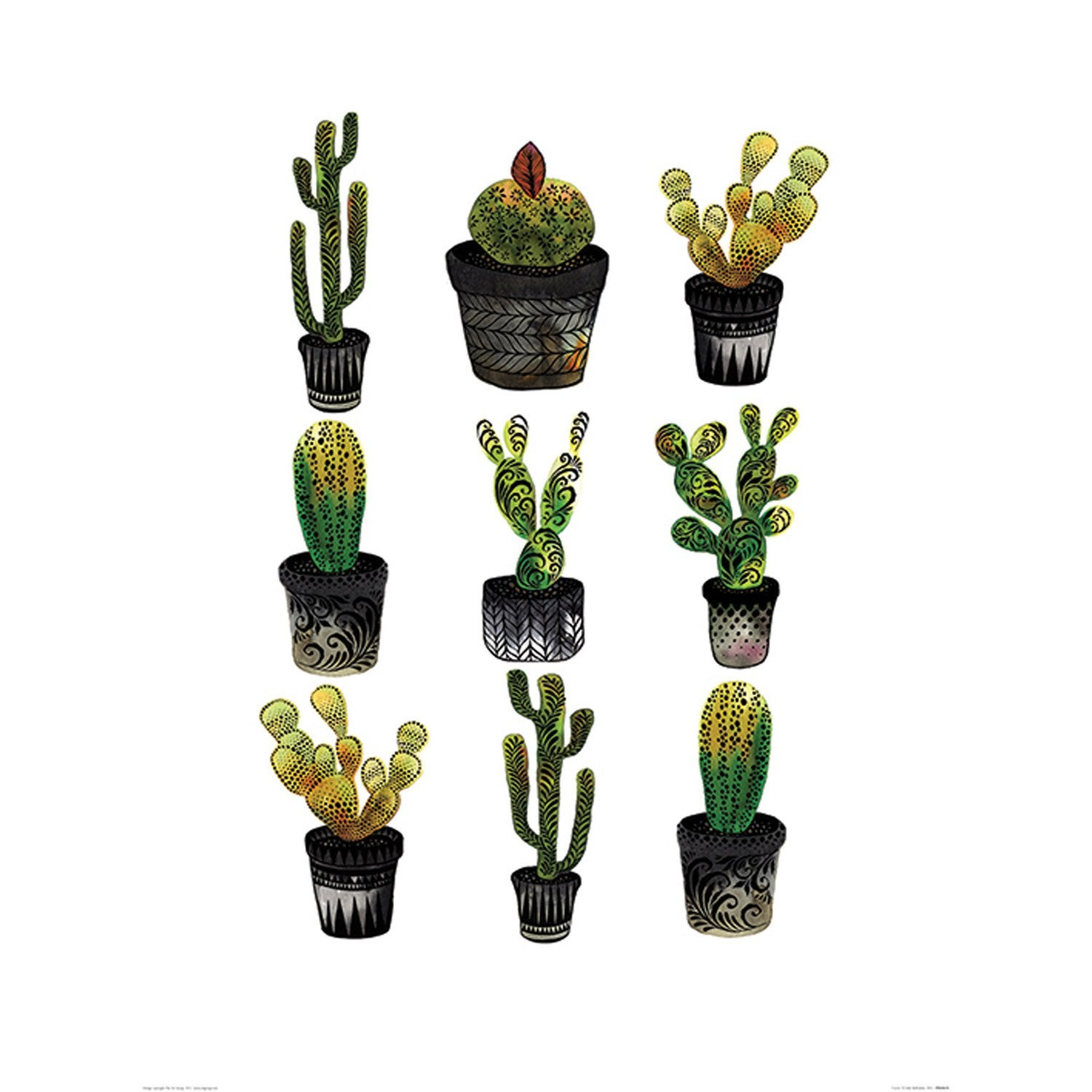 affiche cacti x cm leroy merlin. Black Bedroom Furniture Sets. Home Design Ideas