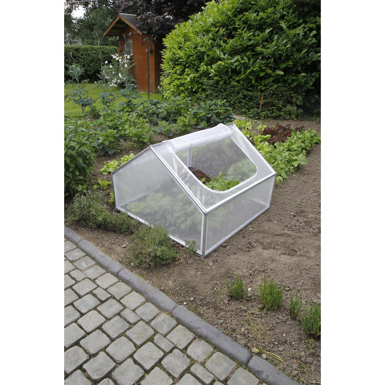 Serre de jardin Mini serre verre horticole