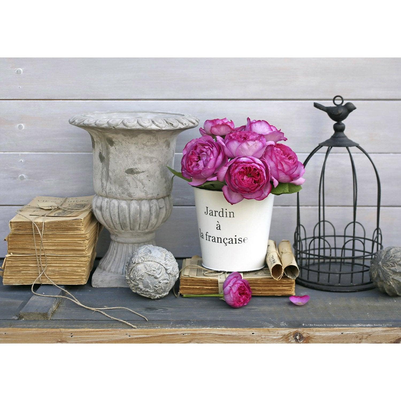 Toile imprim e vasque cage manuscrit roses et seau 70x50 cm leroy merlin - Tableau toile leroy merlin ...