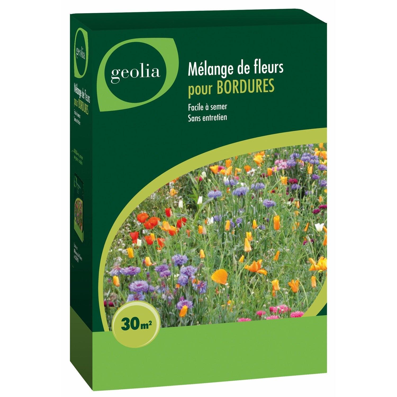 Jach re fleurie pour bordure 250 gr multicolore leroy merlin - Fleur de jachere ...