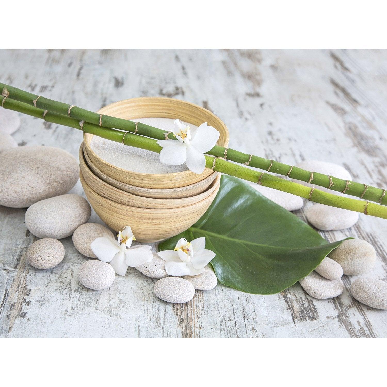 Affiche bambou galet et orchid es 30 x 40 cm leroy merlin - Arrosage bambou exterieur ...