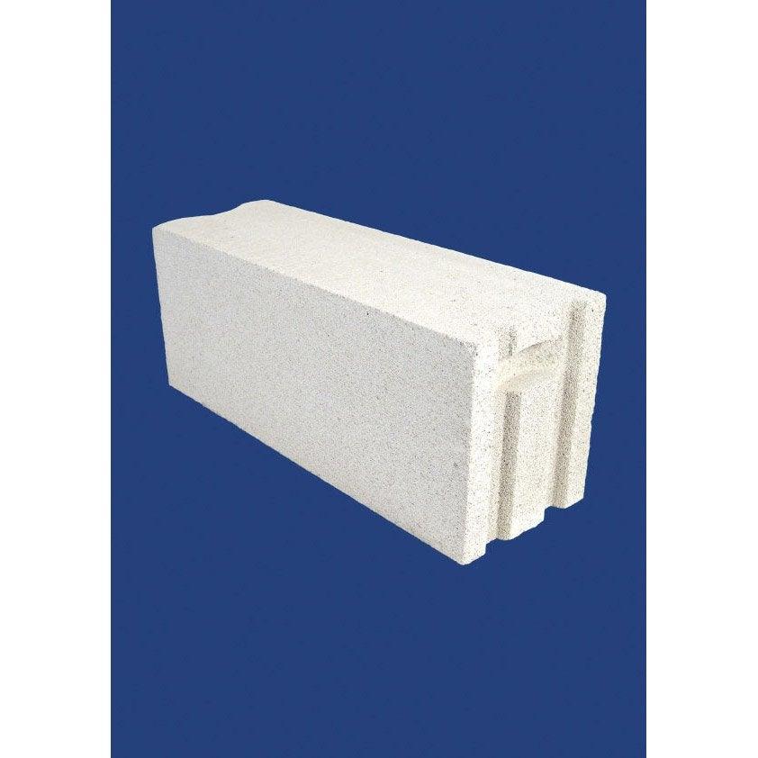 Bloc b ton cellulaire cellumat 30x25x60 cm leroy merlin for Abri de jardin en beton cellulaire