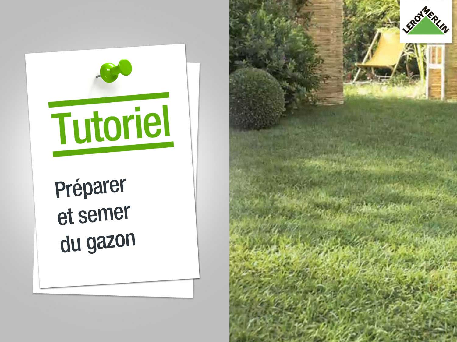comment planter herbe