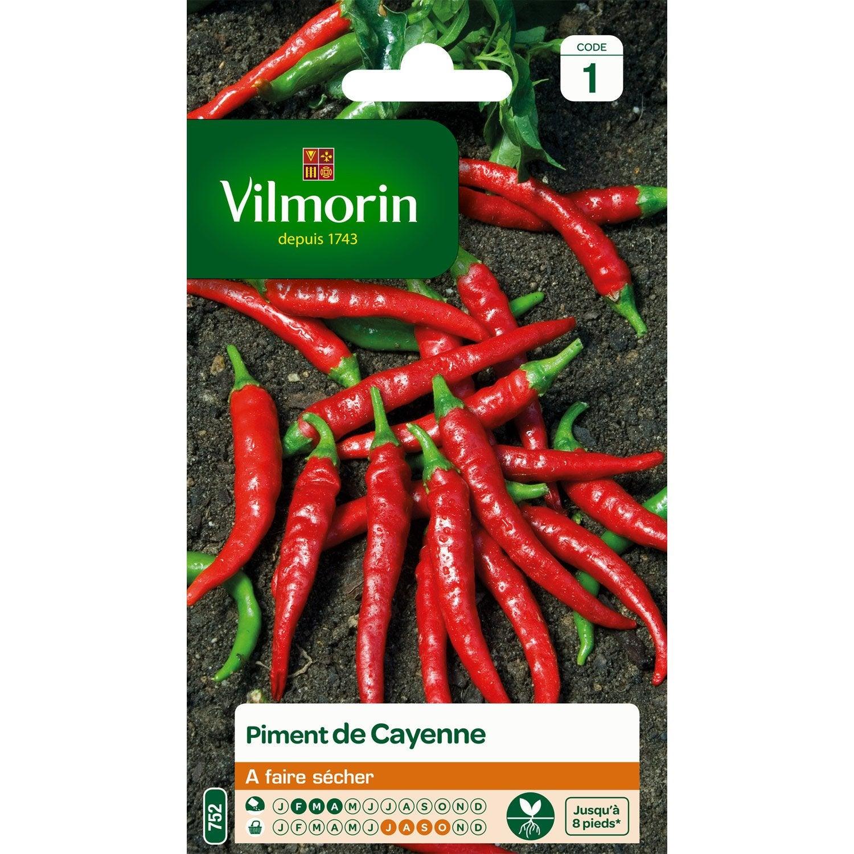 Piment de cayenne vilmorin 2 g leroy merlin - Piment de cayenne culture ...