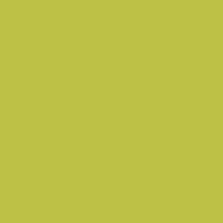 carte test vert acidul v33 mes couleurs et moi pop 15x25 cm leroy merlin. Black Bedroom Furniture Sets. Home Design Ideas