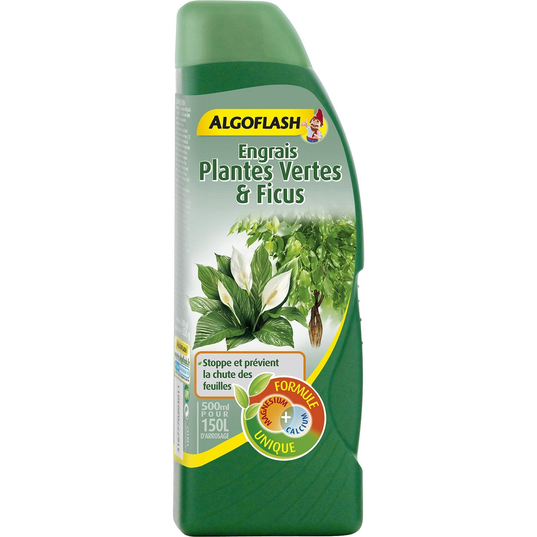 Engrais plantes vertes algoflash 500ml leroy merlin - Leroy merlin plantes ...