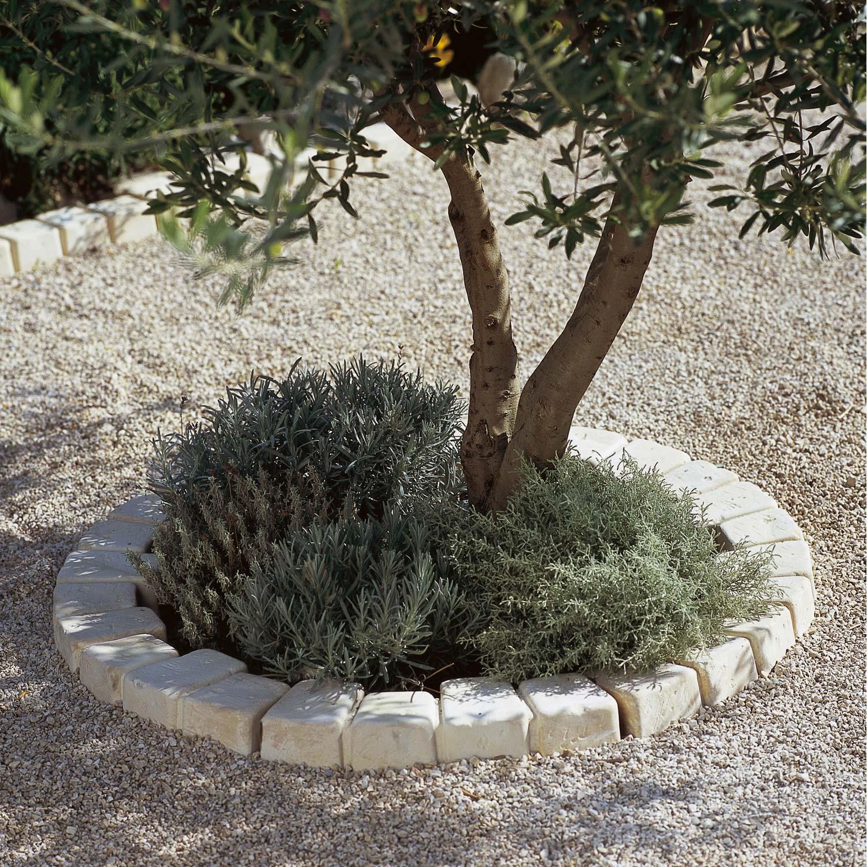 Bordure de jardin en pierre leroy merlin wroc awski for Bordure terre cuite jardin