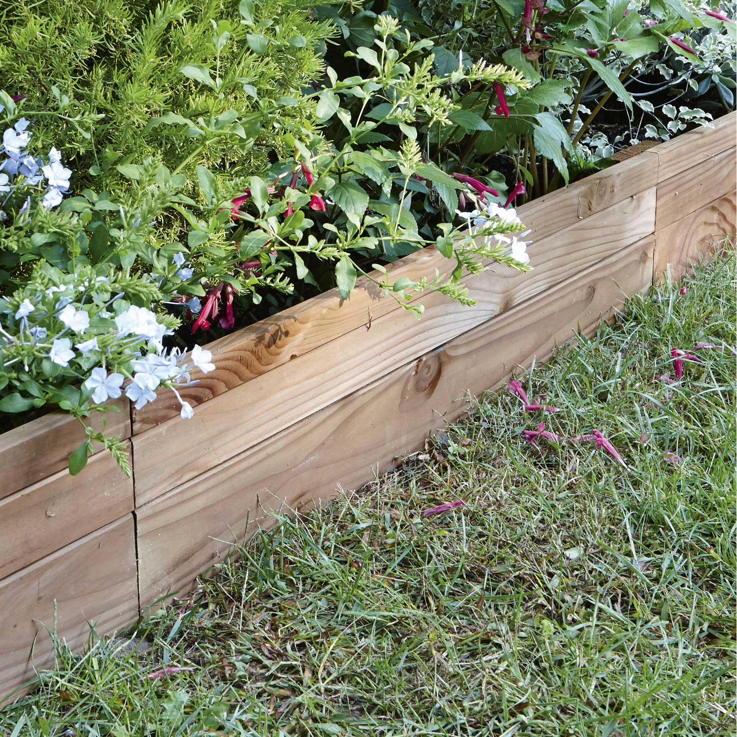 Bordure planter douglas bois marron x cm for Bordures de jardin en bois