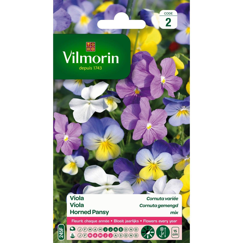 Viola cornuta vari leroy merlin - Tappeto viola leroy merlin ...