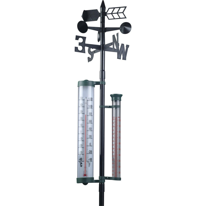 Girouette noire avec thermom tre et pluviom tre inovalley for Station meteo avec sonde piscine