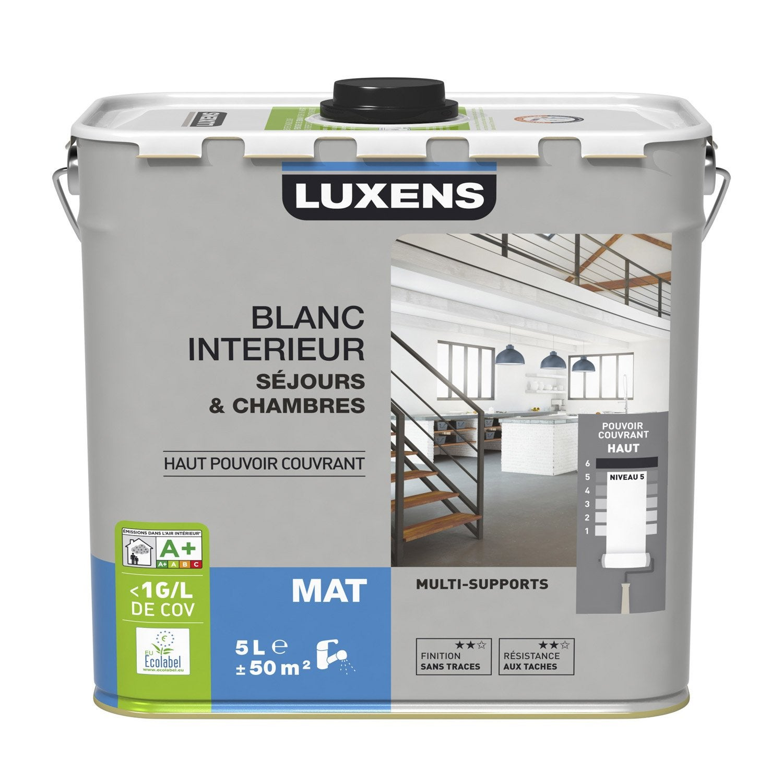 Peinture murs et plafonds s jour chambre luxens blanc - Peinture chambre leroy merlin ...