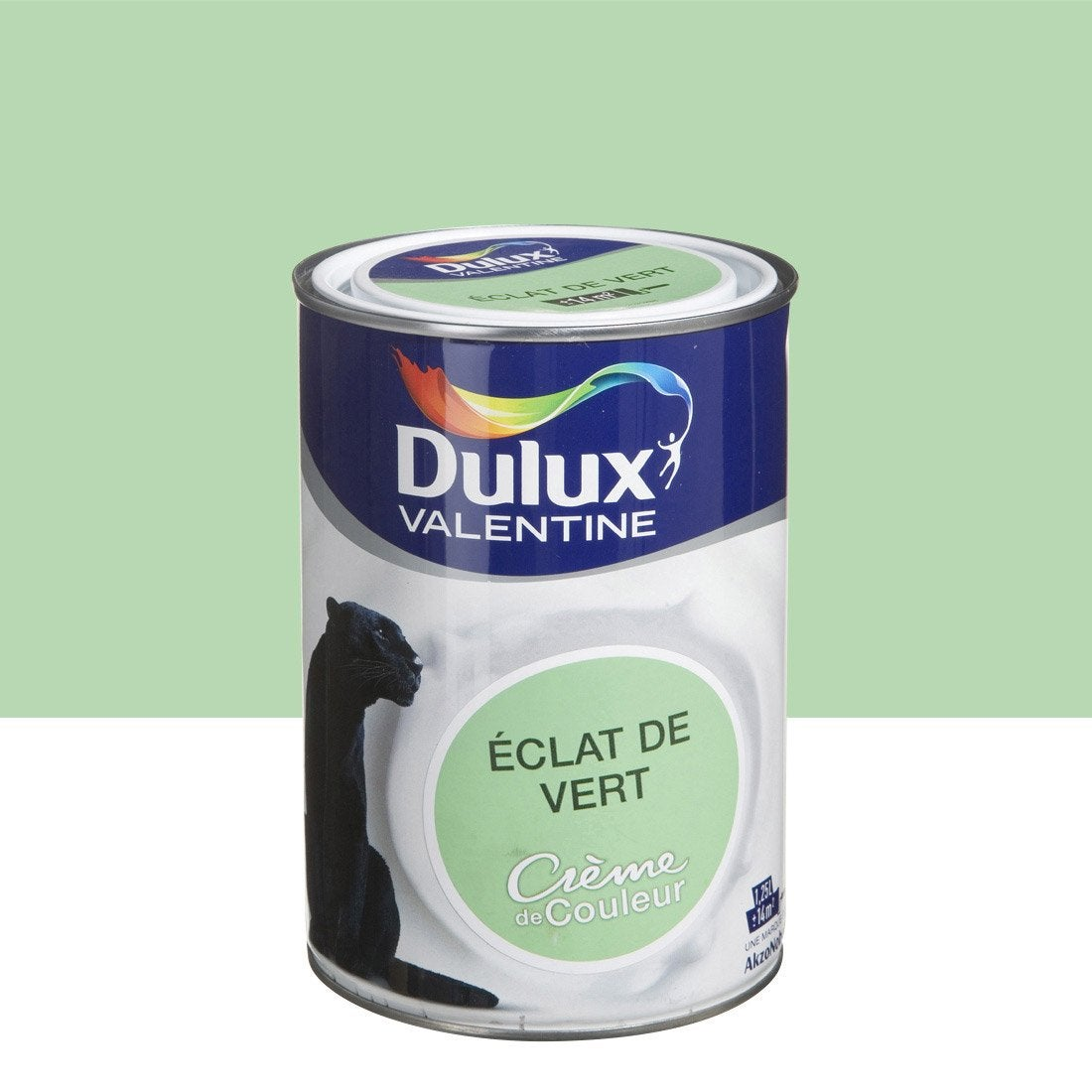 peinture eclat de vert dulux valentine cr me de couleur 1. Black Bedroom Furniture Sets. Home Design Ideas