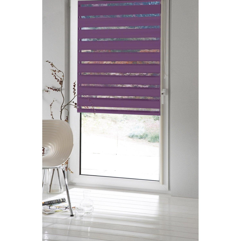 store enrouleur jour nuit inspire violet aubergine n 2 71 x 190 cm lero. Black Bedroom Furniture Sets. Home Design Ideas