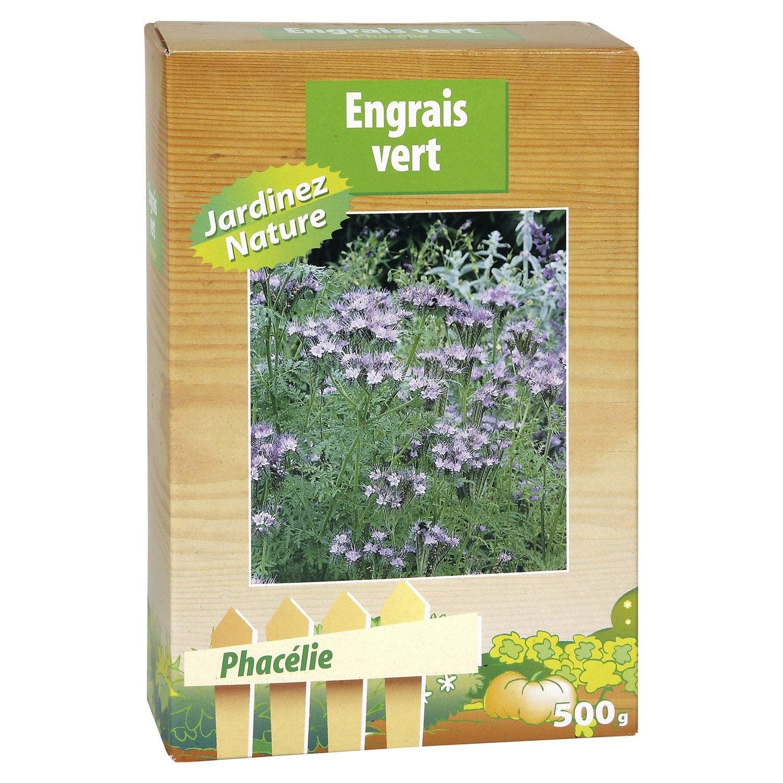 Phacelie engrais vert vilmorin leroy merlin - Engrais vert d automne ...