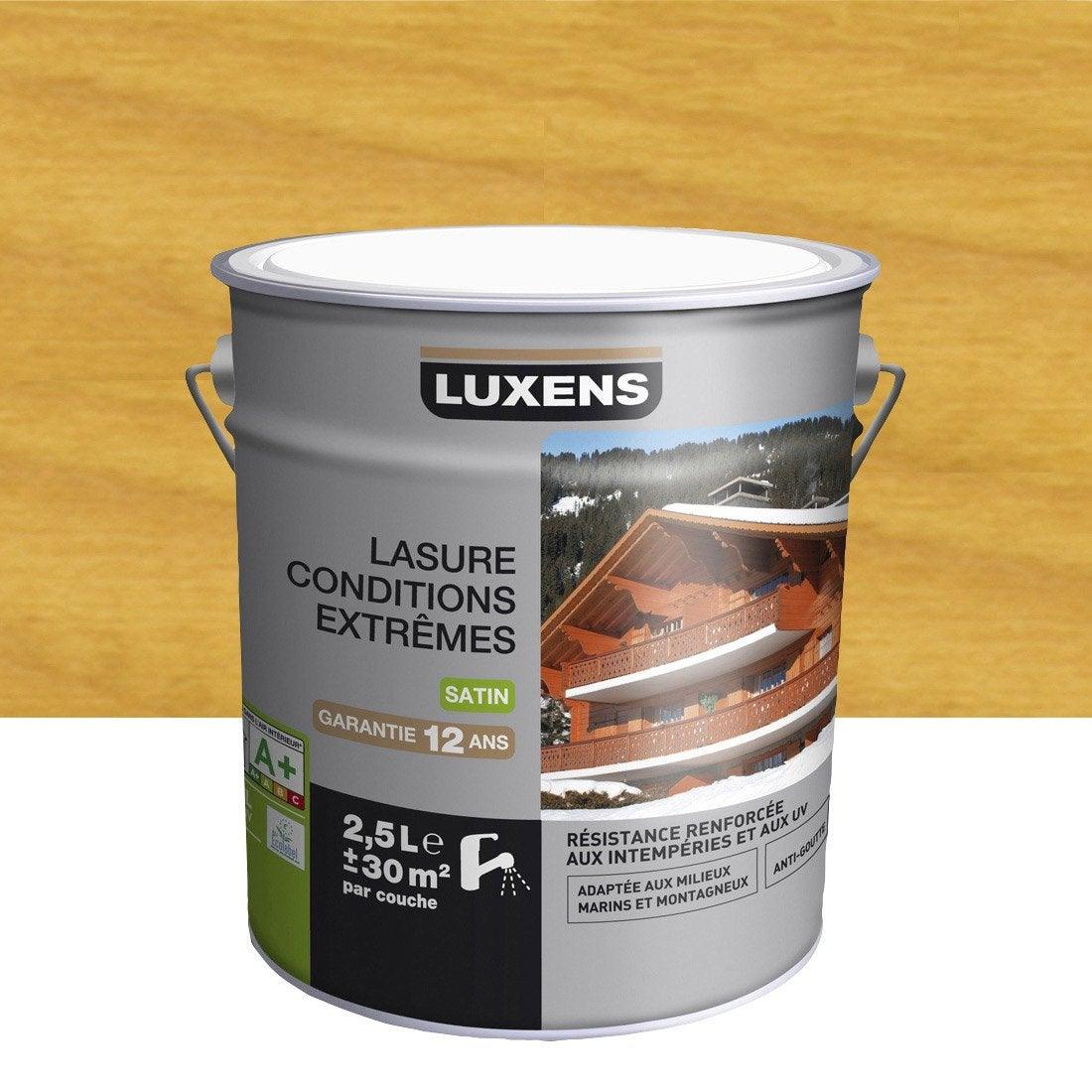 lasure chene clair leroy merlin resine de protection pour peinture. Black Bedroom Furniture Sets. Home Design Ideas
