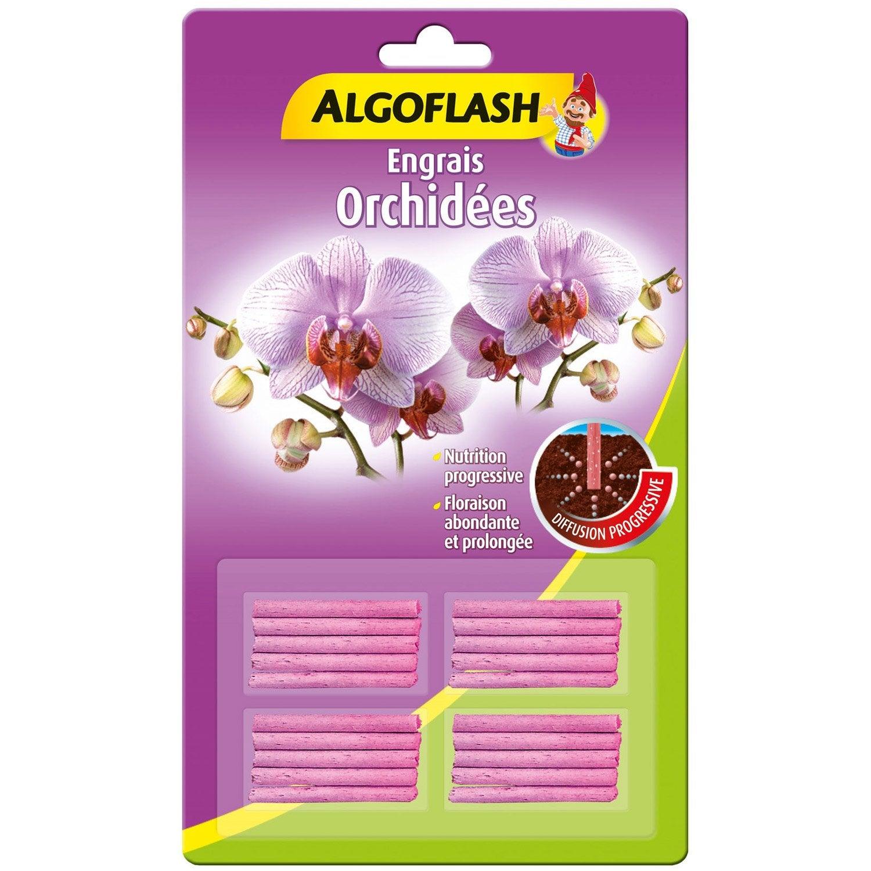 Engrais orchid es algoflash 20 b tonnets leroy merlin - Engrais pour orchidee ...