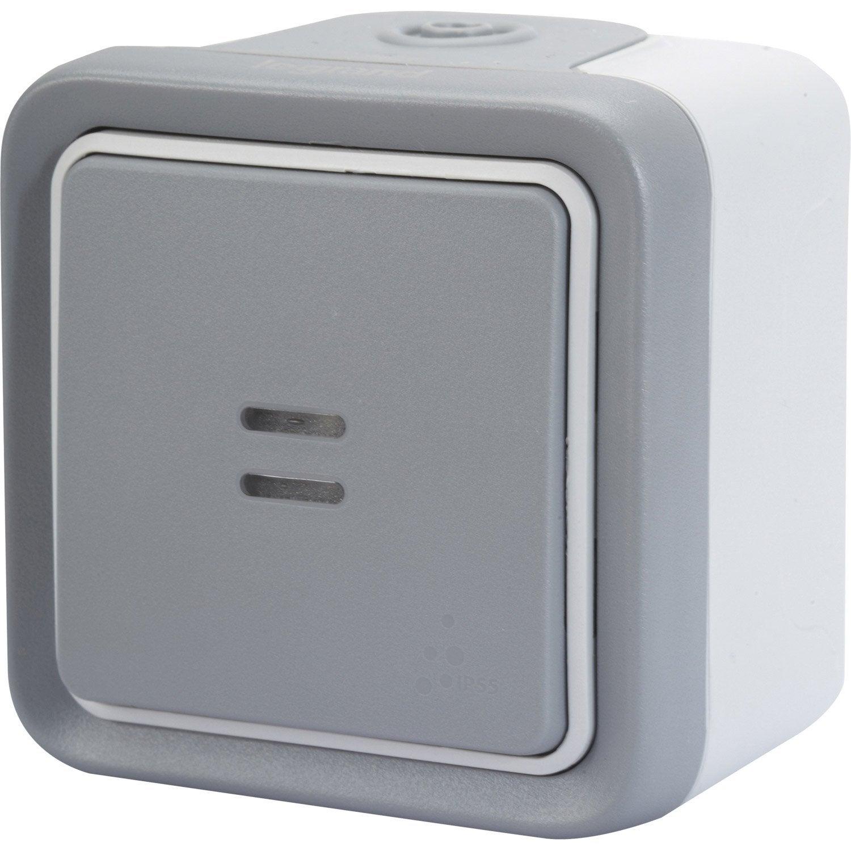 poussoir tanche voyant lumineux legrand plexo gris leroy merlin. Black Bedroom Furniture Sets. Home Design Ideas