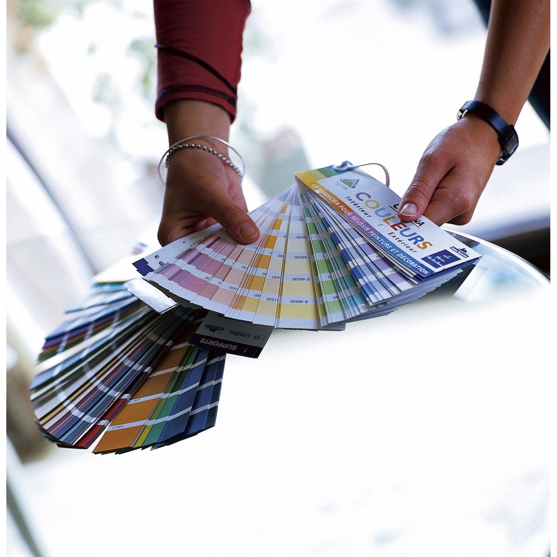 Comment d couvrir les bases pour harmoniser les couleurs leroy merlin - Cours de bricolage castorama ...