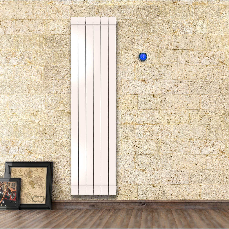 radiateur lectrique inertie fluide equation alidea. Black Bedroom Furniture Sets. Home Design Ideas