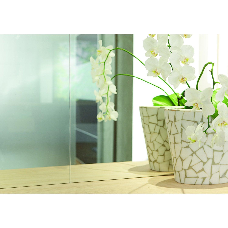 miroir clair lisse x cm 3 mm leroy merlin. Black Bedroom Furniture Sets. Home Design Ideas