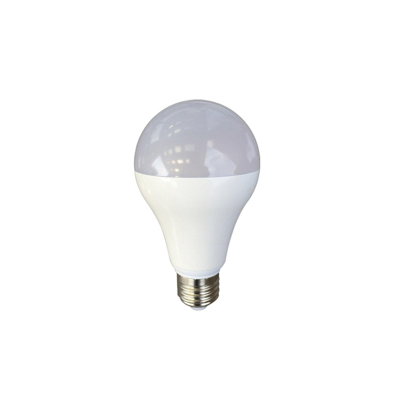 Ampoule standard led 15w 1521lm quiv 100w e27 4000k - Ampoule lumiere noire leroy merlin ...