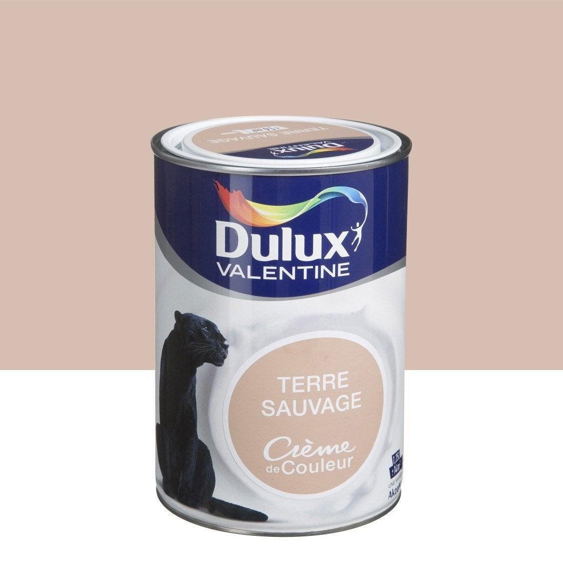 Peinture brun terre sauvage dulux valentine cr me de couleur l leroy merlin - Leroy merlin la valentine ...