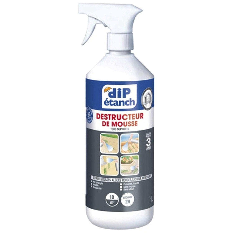 Traitement antimousse Pulvérisateur DIP incolore 1 l
