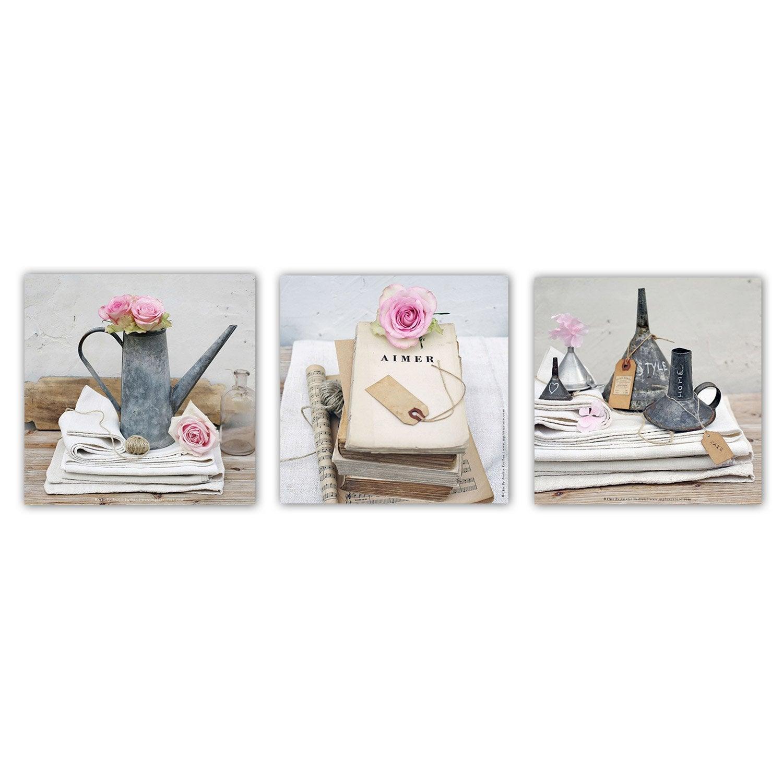 toile imprim e roses x cm leroy merlin. Black Bedroom Furniture Sets. Home Design Ideas