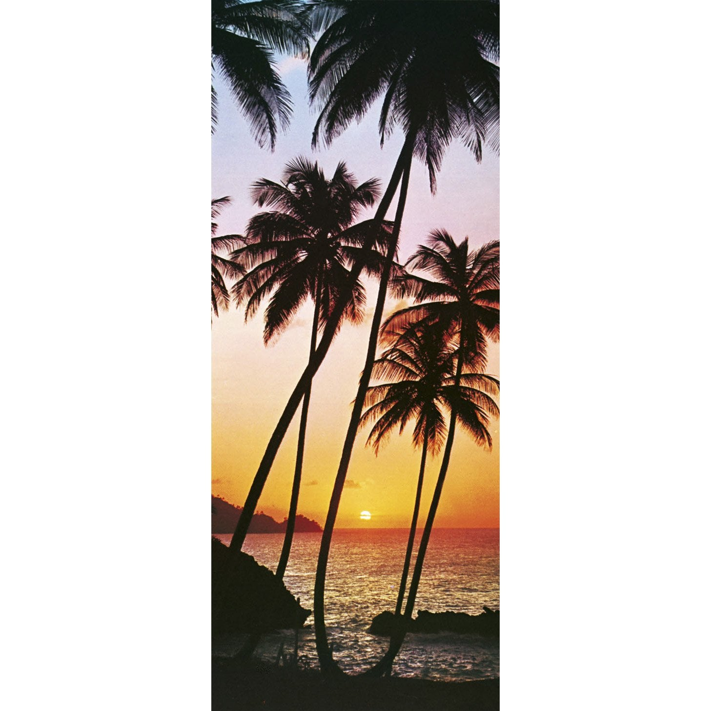 poster de porte sunny palms 86x200 cm leroy merlin. Black Bedroom Furniture Sets. Home Design Ideas