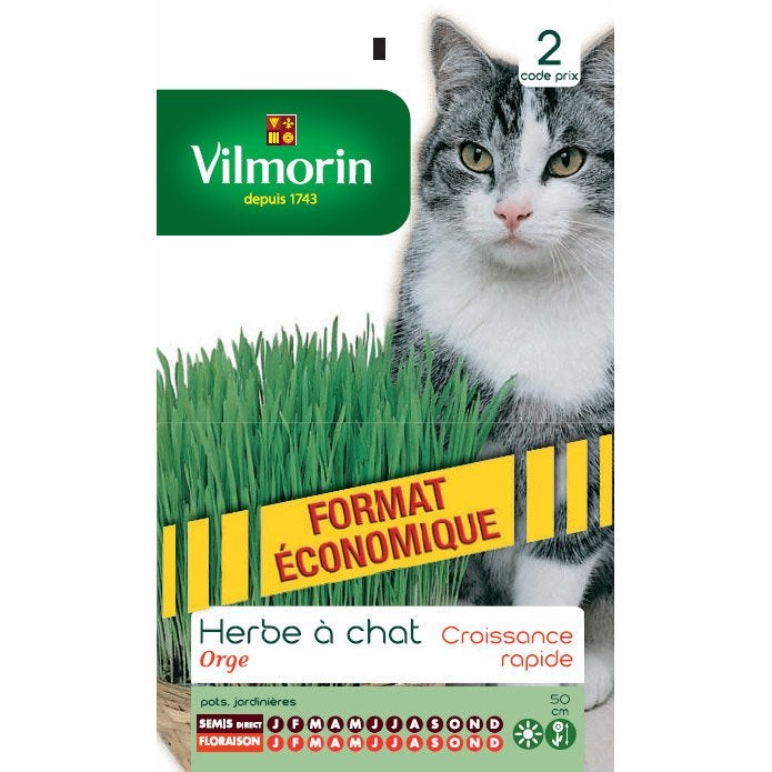 Herbe chat faible entretien vilmorin 10 m leroy merlin - Herbe a chat entretien ...