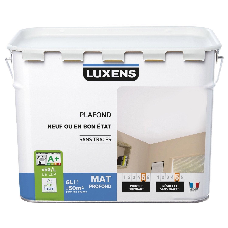 Peinture blanche plafond neuf ou bon tat luxens mat - Meilleur peinture blanche ...