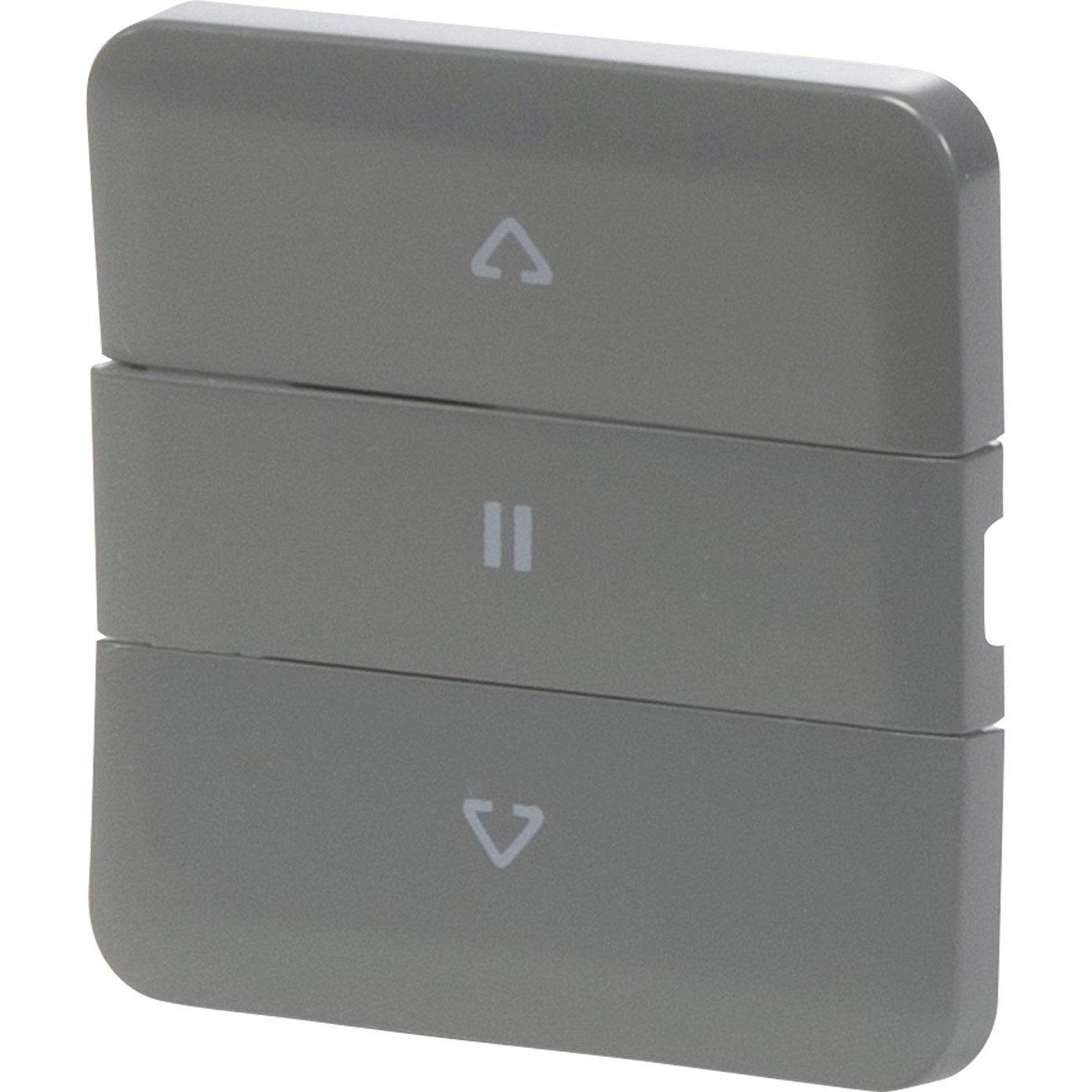 cache pour interrupteur volets roulants lexman gris gris. Black Bedroom Furniture Sets. Home Design Ideas