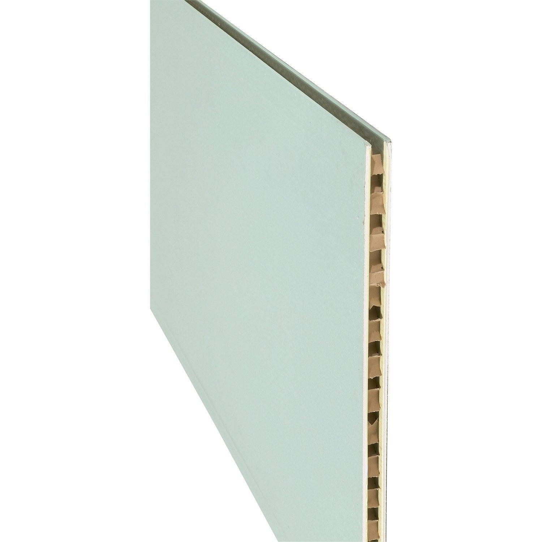 cloison alv olaire hydro nf 2 5 x 1 2 m ep 5 cm leroy merlin. Black Bedroom Furniture Sets. Home Design Ideas