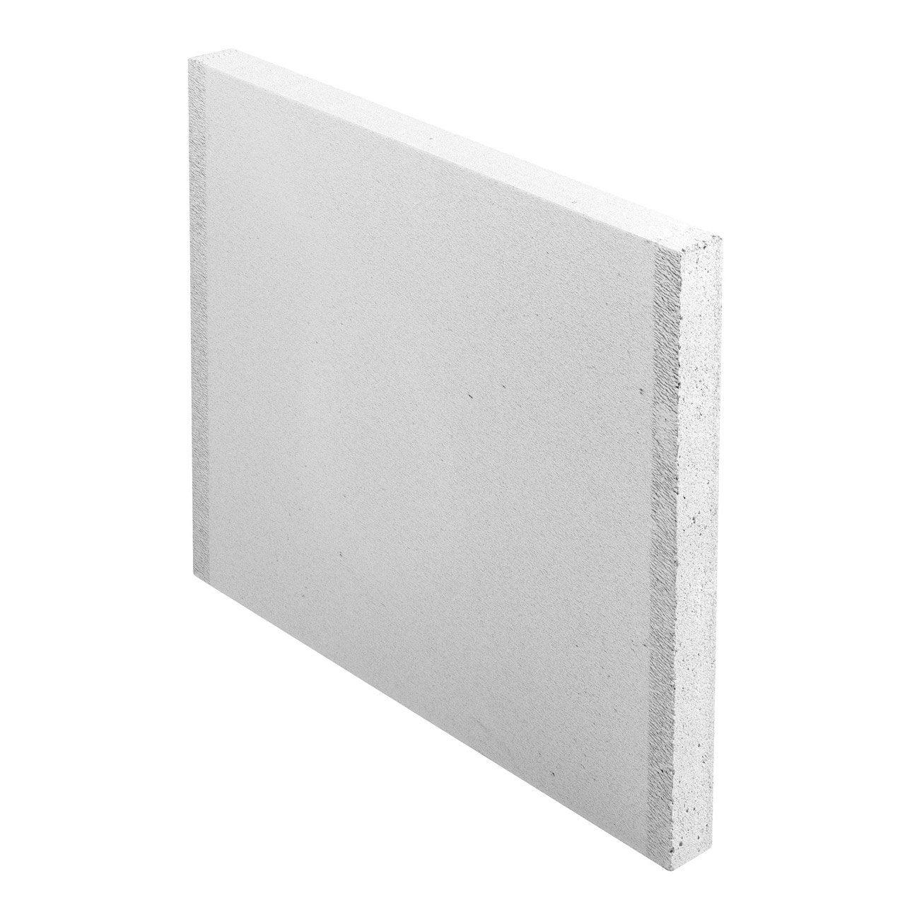Carreau de b ton cellulaire lisse x x ep 5 cm for Abri de jardin en beton cellulaire