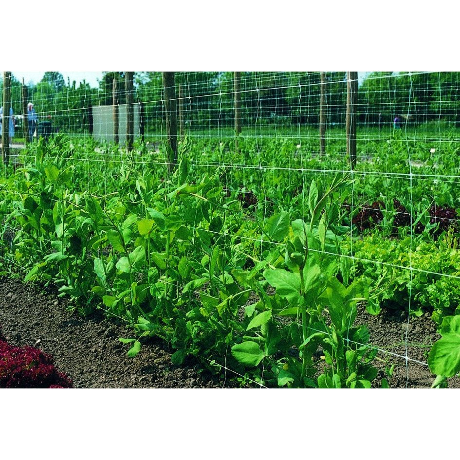 Protection potager - Leroy merlin jardin potager reims ...