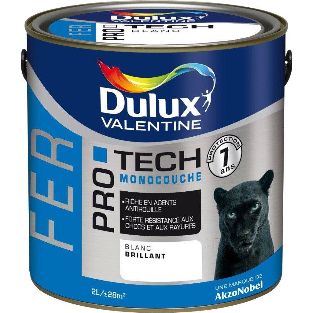 peinture fer ext rieur protech dulux valentine bleu On peinture bleu marine leroy merlin