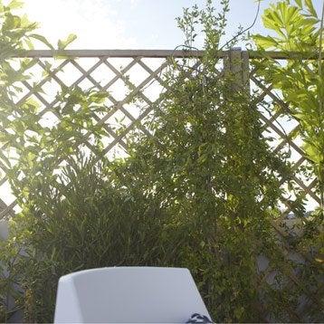 leroy merlin panneau panneau treillis bois ajour sonato l180 cm x h180 cm - Jardiniere Treillis Leroy Merlin