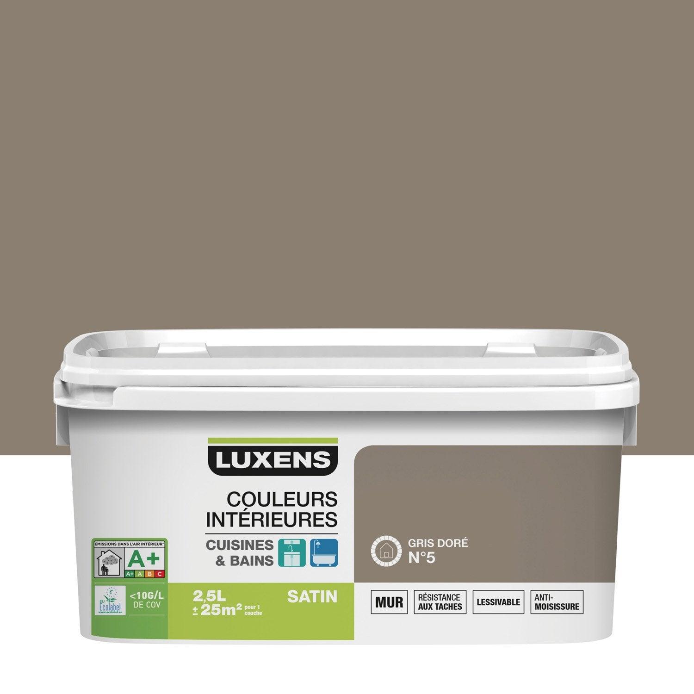 Peinture couleurs int rieures luxens gris dor 5 2 5 l - Peinture grise leroy merlin ...