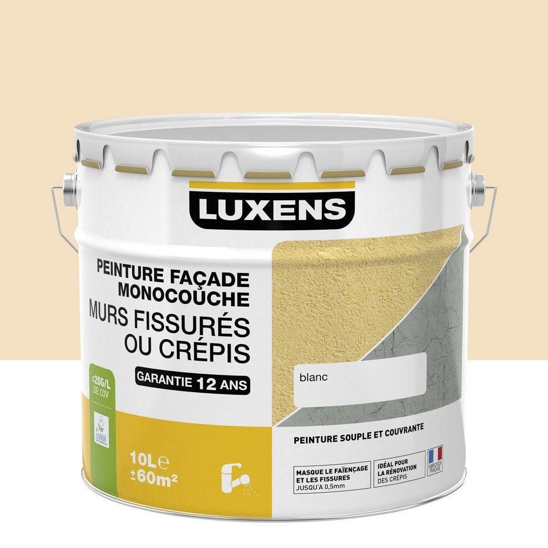 peinture fa ade murs fissur s luxens sable 10 l leroy