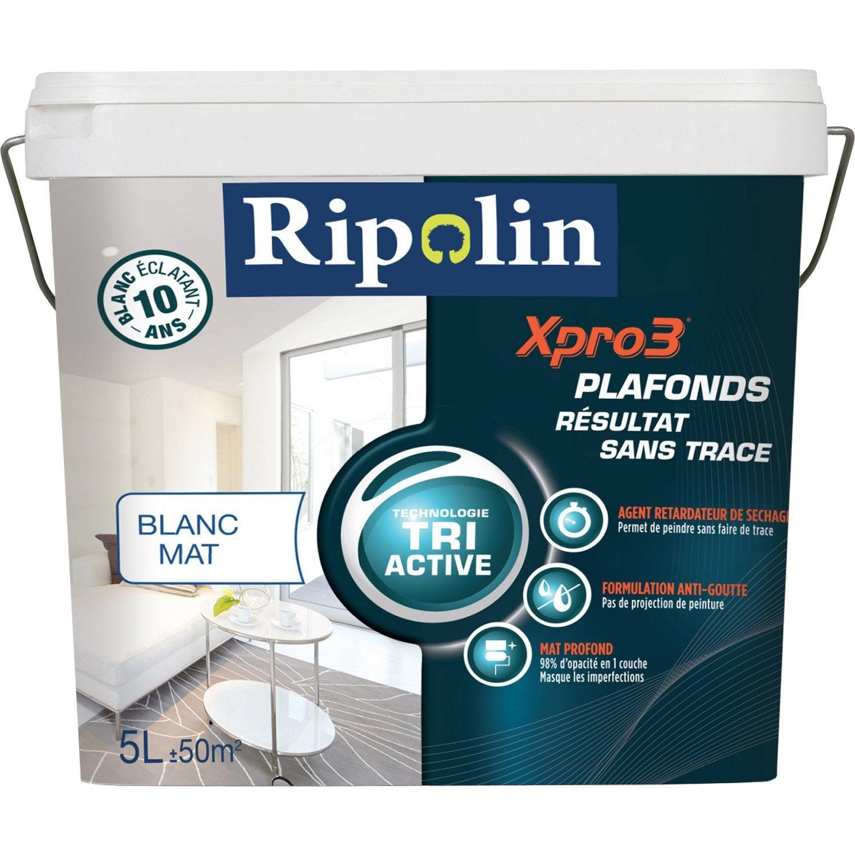 retardateur peinture acrylique plafond resine de protection pour peinture. Black Bedroom Furniture Sets. Home Design Ideas