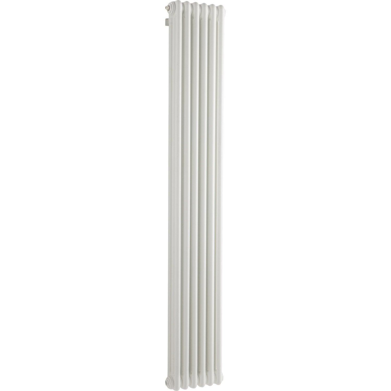 Radiateur chauffage central tesi blanc cm 1014 w for Chauffage exterieur leroy merlin