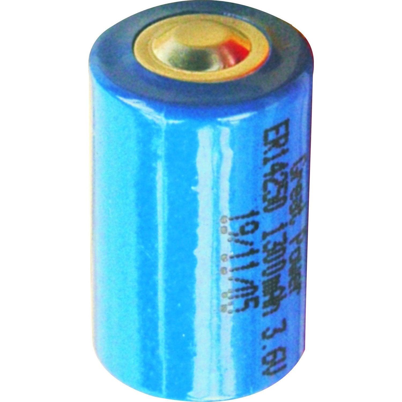 Pile lithium 3 6v bleu pour alarme for Alarme pour maison individuelle leroy merlin