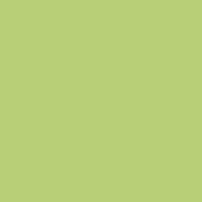 Peinture vert wasabi ripolin attitude atelier culinaire 2 5 l leroy merlin for Peinture ripolin