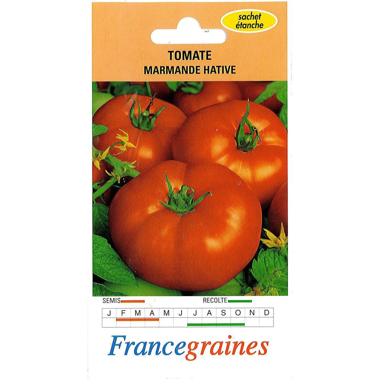 Tomate marmande france graines 1 g leroy merlin - Serre a tomate leroy merlin ...