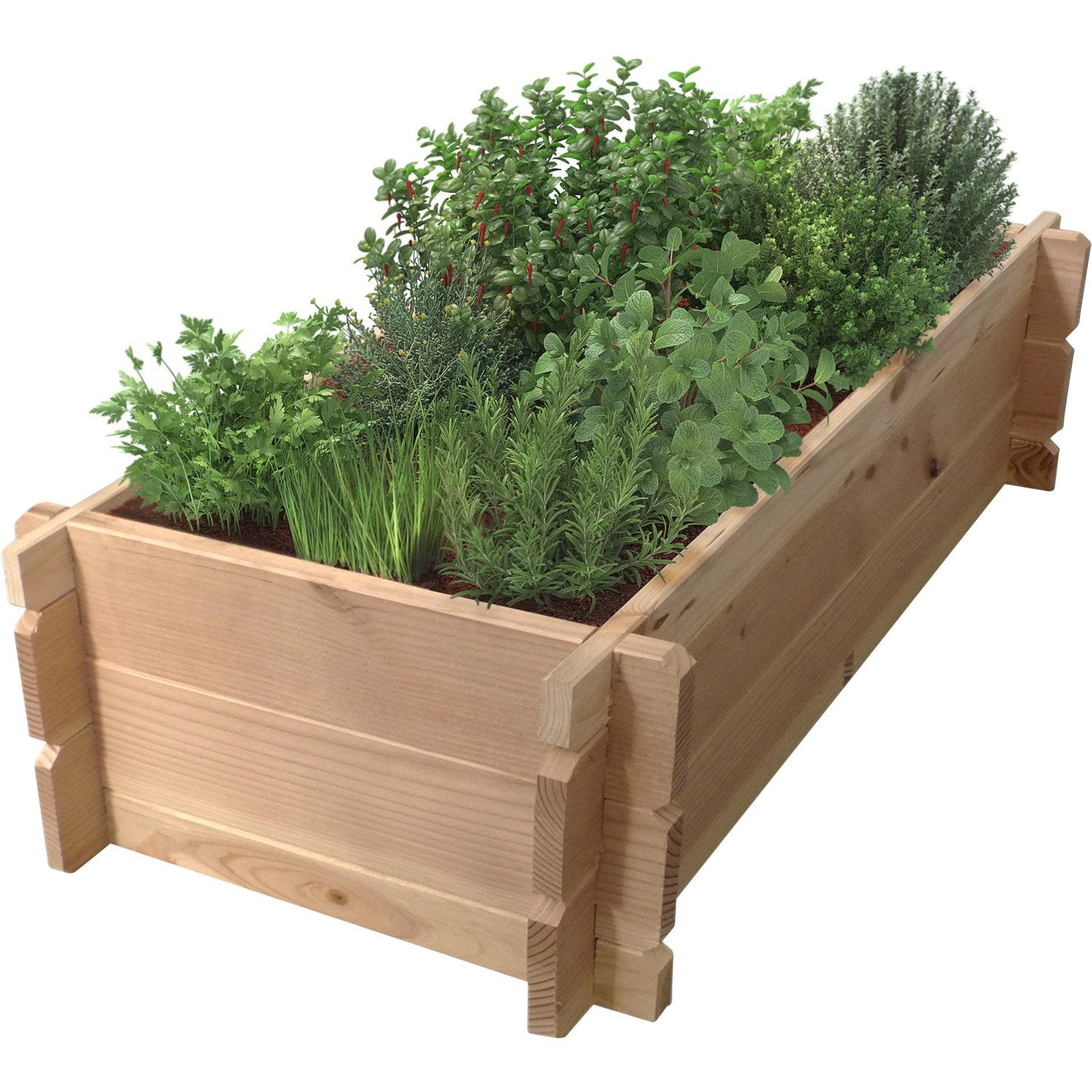 Carr potager geolia capucine naturel x x for Carre de jardin