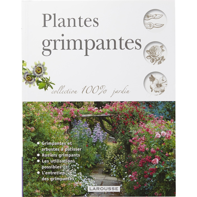 Plantes grimpantes larousse leroy merlin - Leroy merlin plantes ...