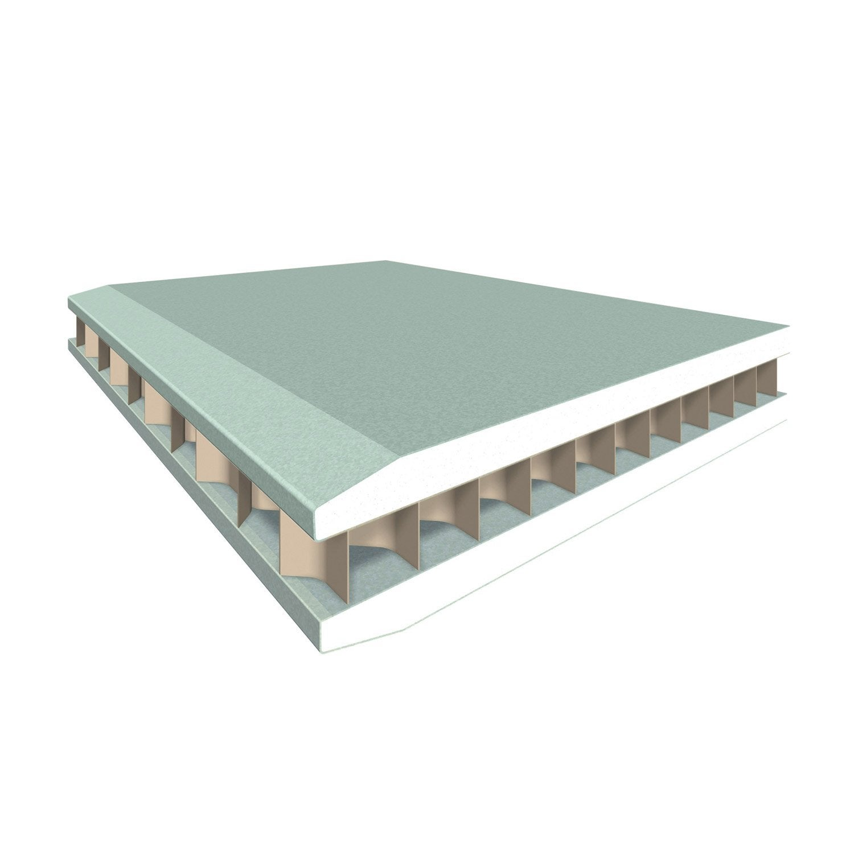cloison alv olaire hydro ce 2 6 x 1 2 m ep 5 cm leroy merlin. Black Bedroom Furniture Sets. Home Design Ideas