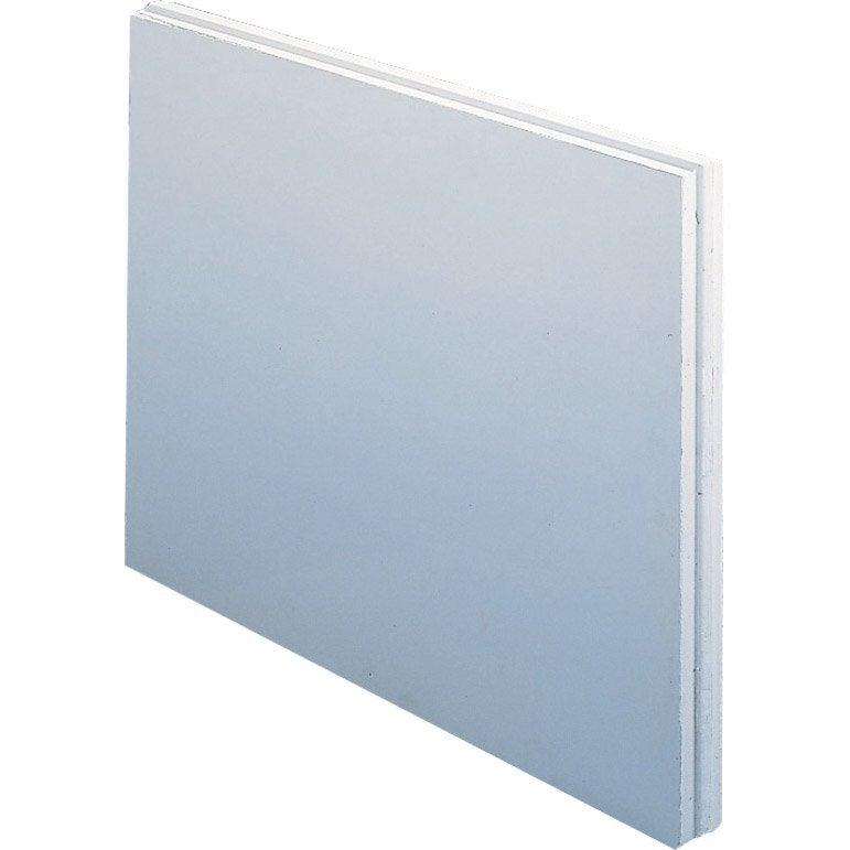 Carreau de plâtre plein hydrofuge L.50 x l.66 x Ep.10 cm | Leroy ...